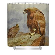 Pair Of Golden Eagles By Thorburn Shower Curtain