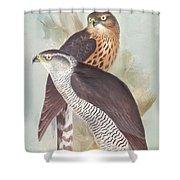 Pair Of Goshawks Shower Curtain