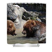 Pair Of Grizzly Bears Wading In A Shallow River Shower Curtain