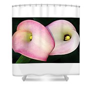 Pair Of Hearts Shower Curtain