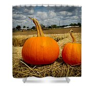 Pair Of Perfect Pumpkins Shower Curtain