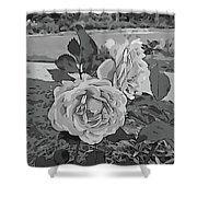 Pair Of Roses In Grayscale Shower Curtain