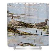 Pair Of Willets Shower Curtain