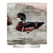 Pair Of Wood Ducks Shower Curtain