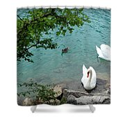 Pairs Of A Feather Shower Curtain