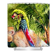 Pajaro Shower Curtain by Karen Stark