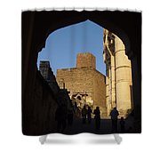 Palace Through Arch Shower Curtain