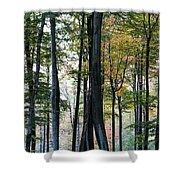 Palatine Forest Shower Curtain
