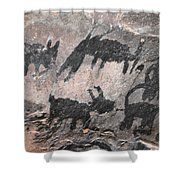 Palatki Pictoglyph Shower Curtain