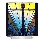 Paleo Diplo Shower Curtain
