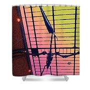 Paleo Flight Shower Curtain