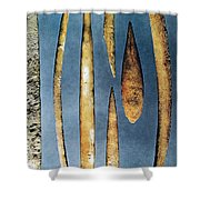 Paleolithic Spears Shower Curtain