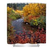 Palisades Creek Canyon Autumn Shower Curtain