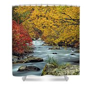 Palisades Creek Shower Curtain