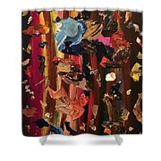 Pallette Cleansing Shower Curtain