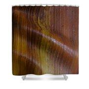 Palm 1 Shower Curtain
