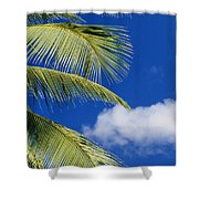 Palm Abstract Shower Curtain