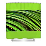 Palm Abstract By Kaye Menner Shower Curtain