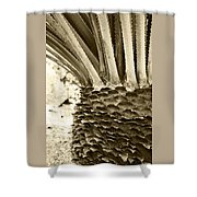 Palm Abstraction Shower Curtain