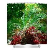 Palm And Azaleas Shower Curtain