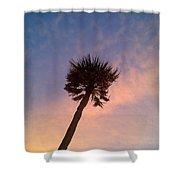 Palm At Dusk Shower Curtain