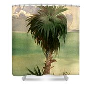 Palm At Horseshoe Cove Shower Curtain