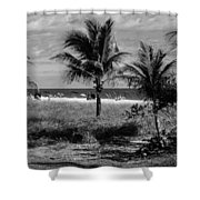 Palm Beach Road Trip Shower Curtain