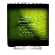 Palm Branch Shower Curtain