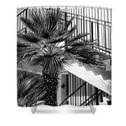Palm Chevron Palm Springs Shower Curtain