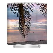 Palm Courtain II Shower Curtain