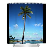 Palm Day Shower Curtain