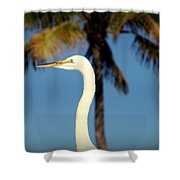 Palm Egret Shower Curtain