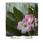Palm Flower Shower Curtain