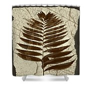 Palm Fossil Sandstone  Shower Curtain
