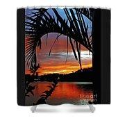 Palm Framed Sunset Shower Curtain