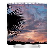Palm Frond At Dusk Shower Curtain
