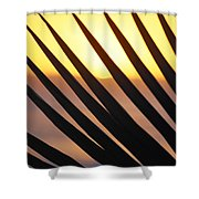 Palm Frond Detail Shower Curtain