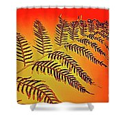 Palm Frond In The Summer Heat Shower Curtain