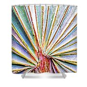 Palm Frond Lines Shower Curtain