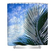Palm Fronds And Clouds Shower Curtain