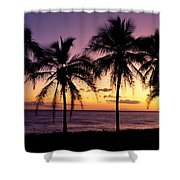 Palm Horizons Shower Curtain