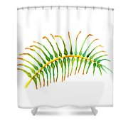 Palm Leaf Watercolor Shower Curtain