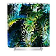 Palm Leaves In Blue Shower Curtain