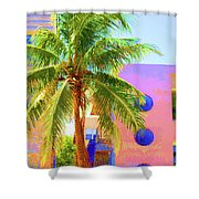 Palm Of Miami Shower Curtain
