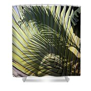Palm On Palm Shower Curtain