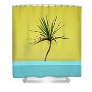 Palm On Porch Shower Curtain