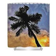 Palm On The Beach Shower Curtain