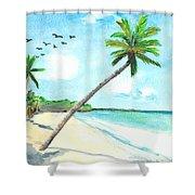 Palm Over Diani Beach Shower Curtain