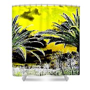 Palm Paradise   Shower Curtain