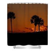 Palm Paradise Shower Curtain